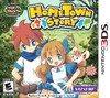 HomeTown-Story-img-3ds