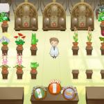 Crazy-Plant-Shop-img1