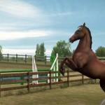 My-Horse-img2