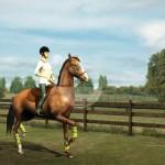 My-Horse-img3